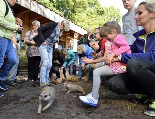 14.09.18 – dag voor peetouders van de dierentuin