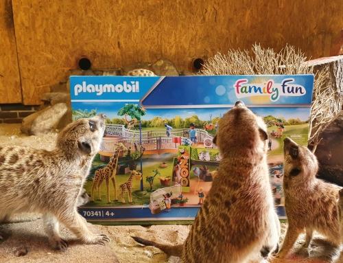 Dierplezier in de zomer: PLAYMOBIL en Tierpark Nordhorn nodigen je uit voor de grote Zoo Quiz!
