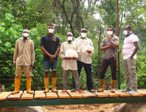 Große Freude in Afrika über zehntausend Mund-Nasen-Masken